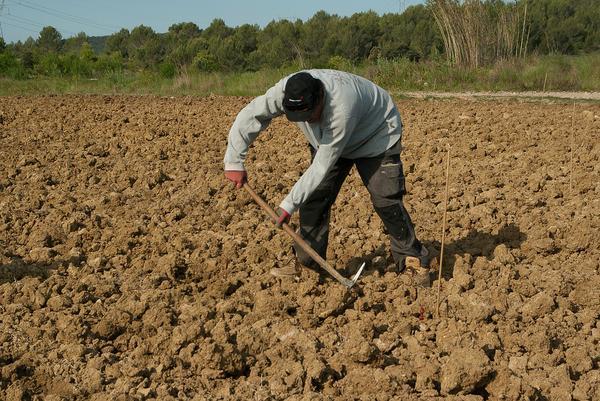 Życie współczesnych rolników