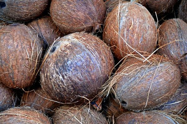 materac kokosowy sklep